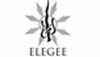 Elegee Guitars